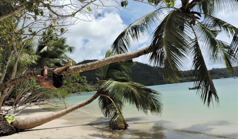Le spiagge più belle delle Seychelles
